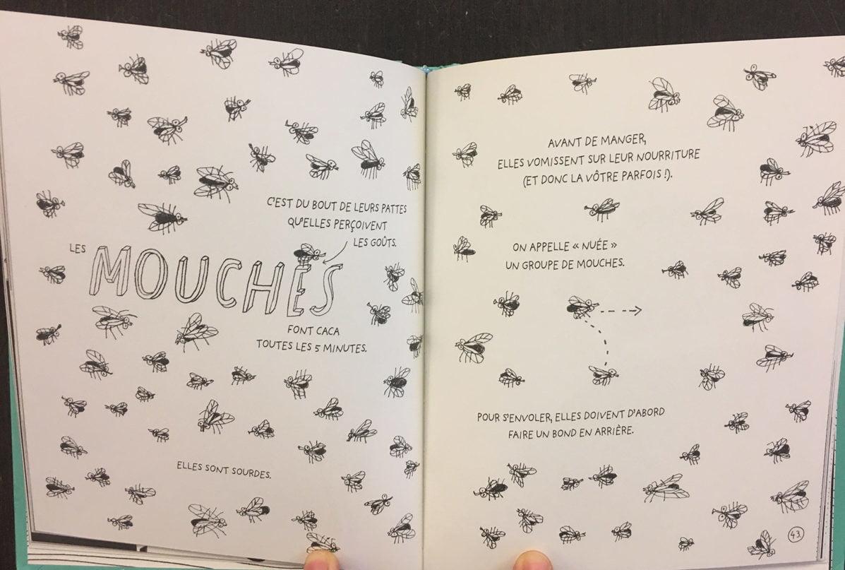Faits étonnants sur les mouches