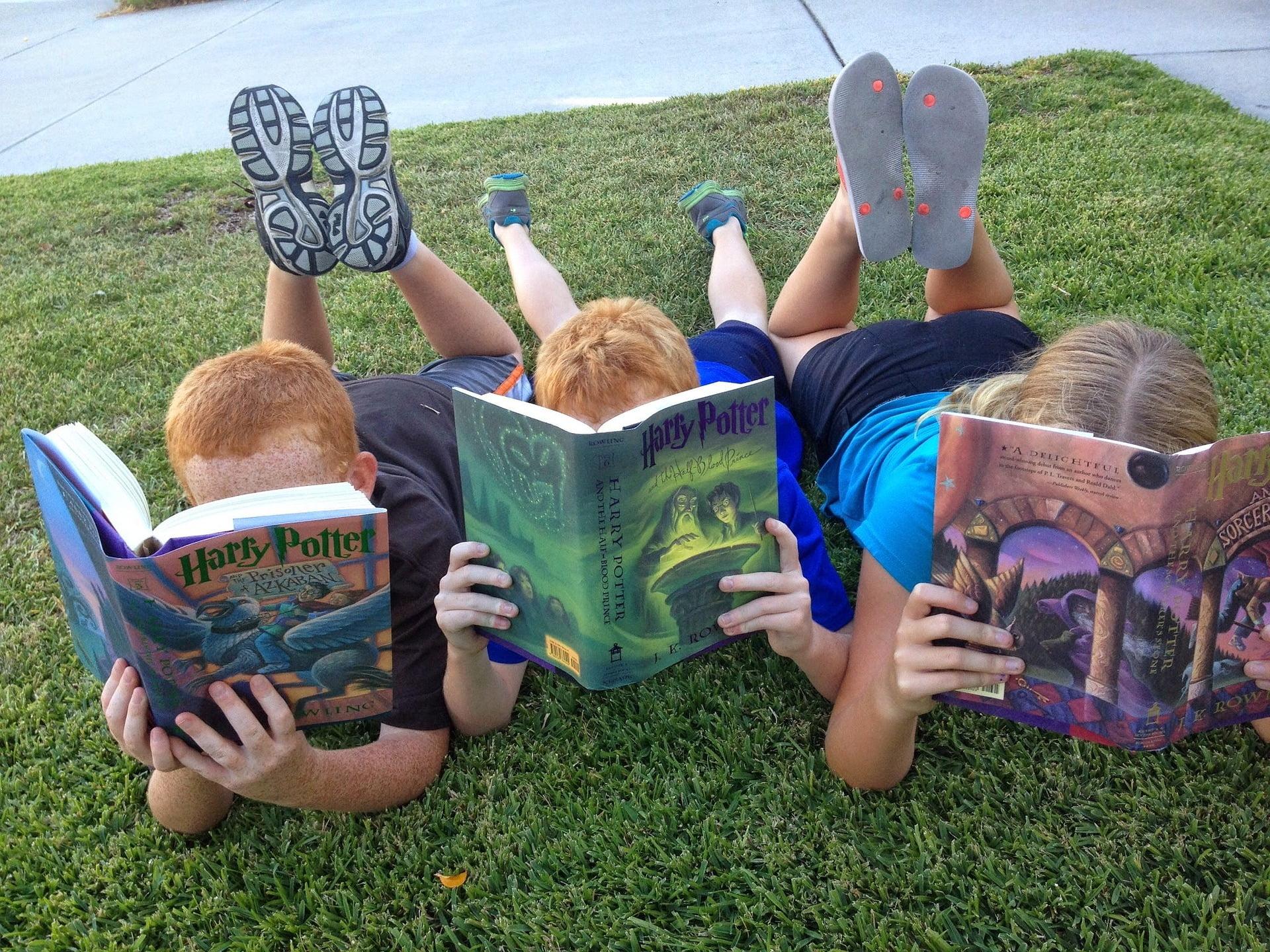 Se plonger dans des livres, aimer lire