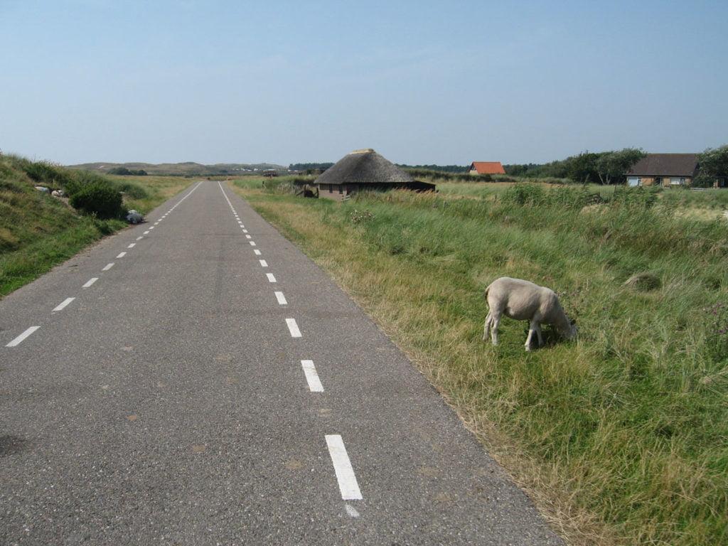 Les pistes cyclables aux Pays-Bas
