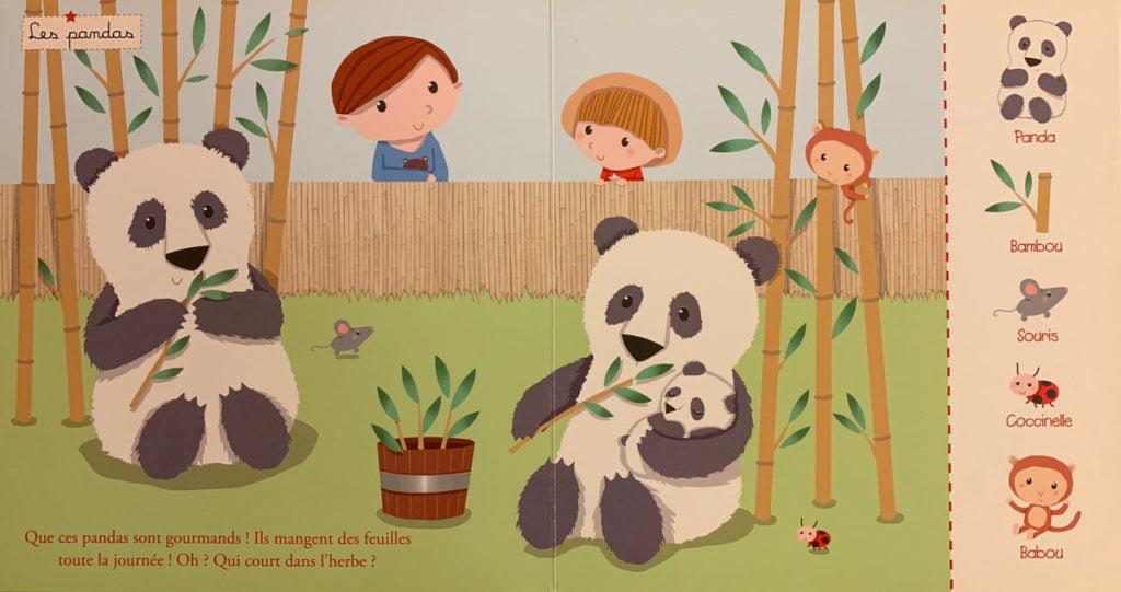 activité ludique et d'observation pour bébés