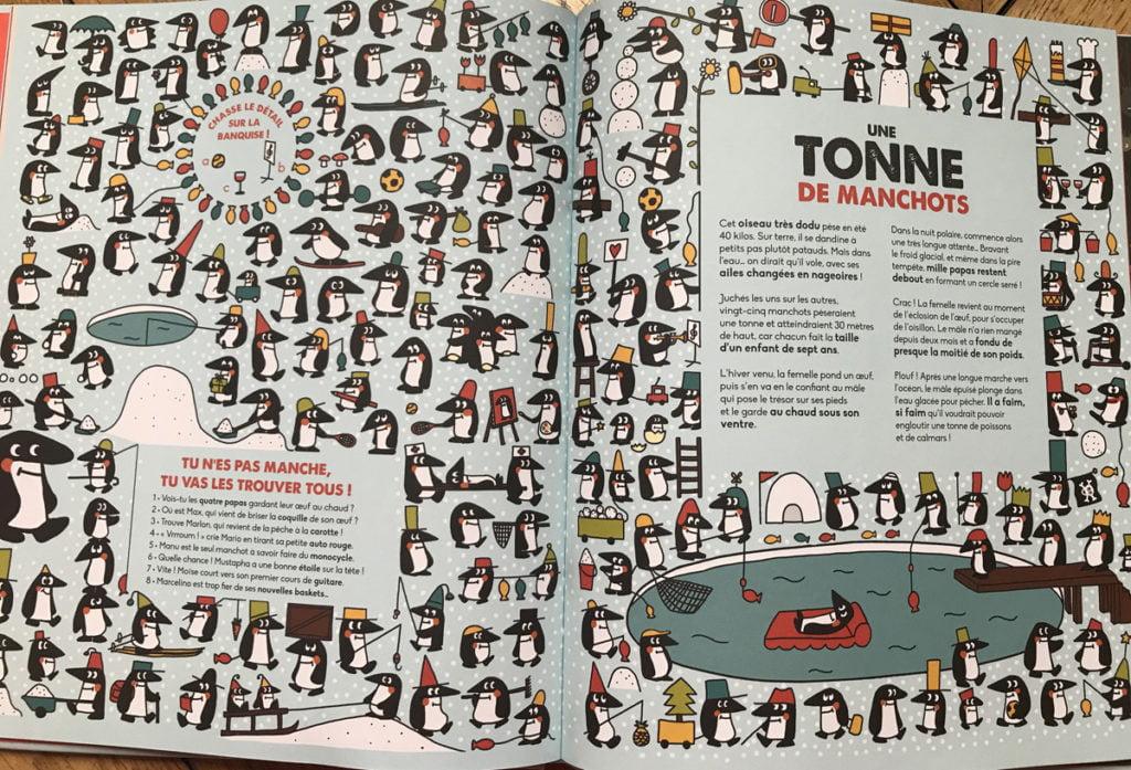 Des tonnes de pingouins