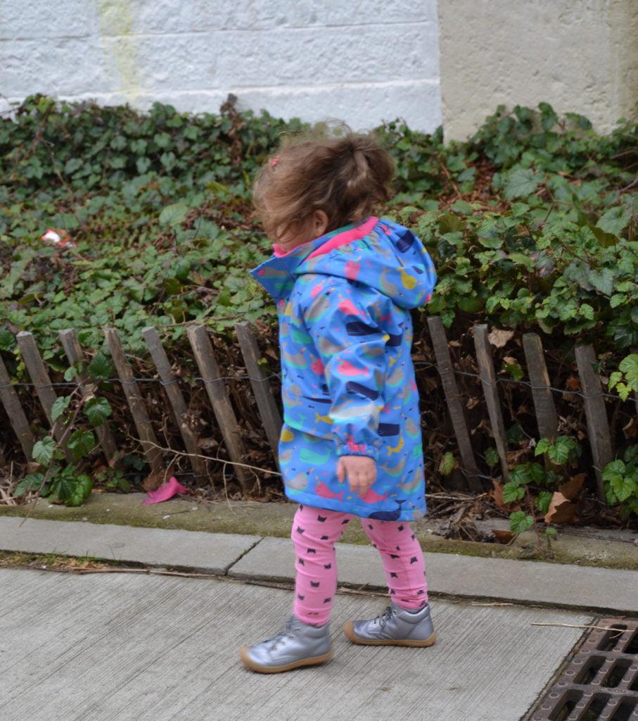 3 kleine Grenouille, le blog
